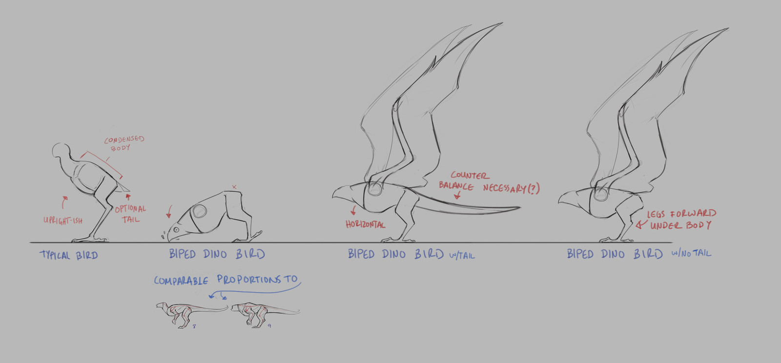 A quick note on thoughts I was having about bird anatomy versus dino anatomy. The inclusion of a tail for counter-balancing would require an adjustment for where the legs rested under the body.
