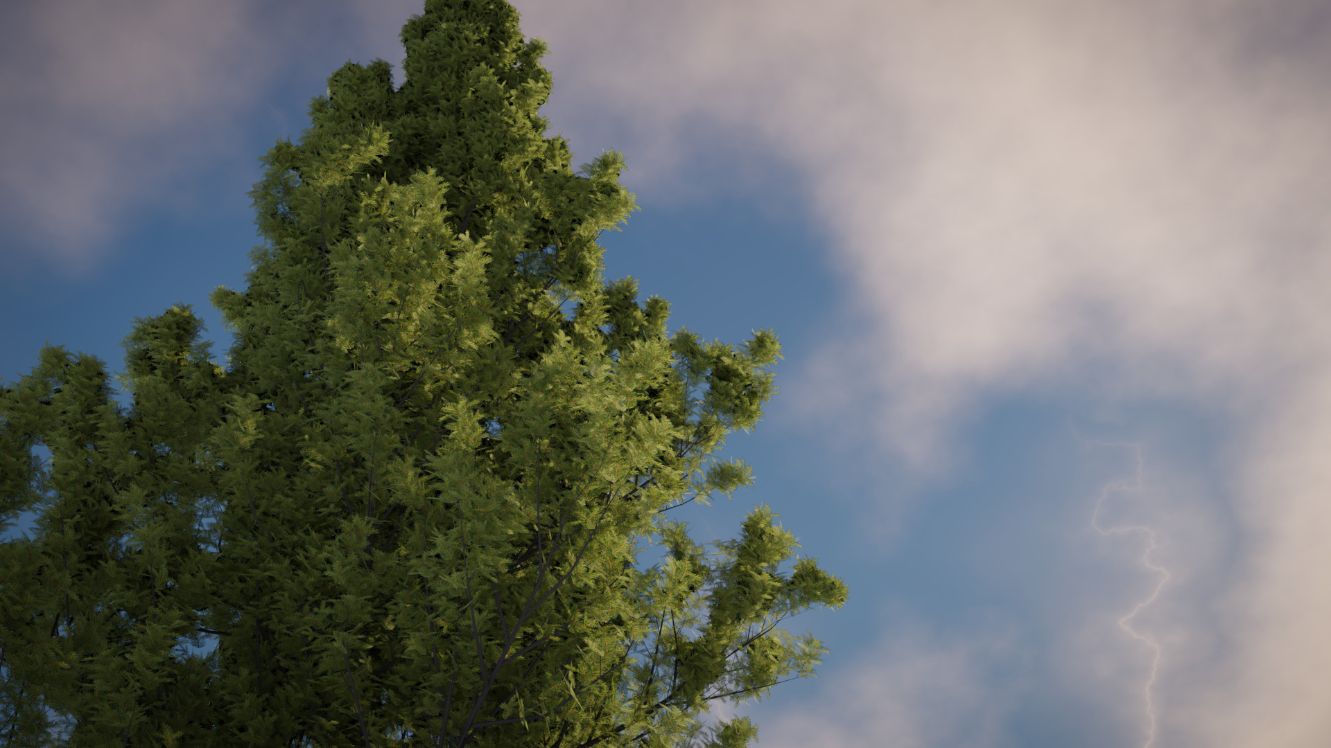 Tucker epp tree