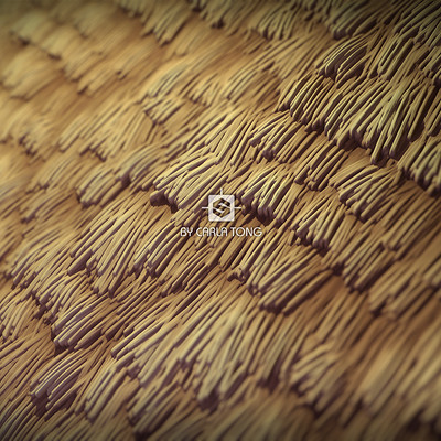 Carla tang substance stylized straw wallpaper