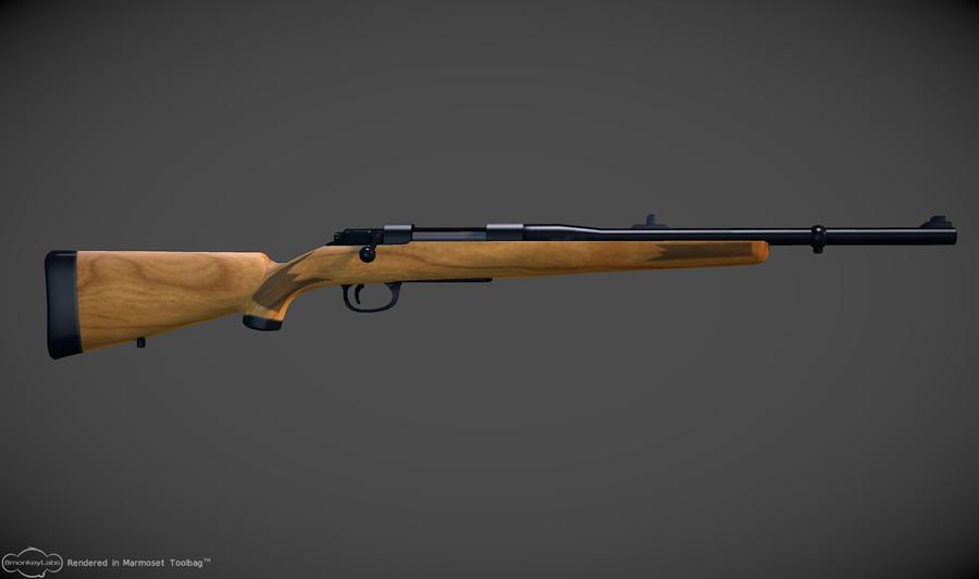 Daniel eady rifle243
