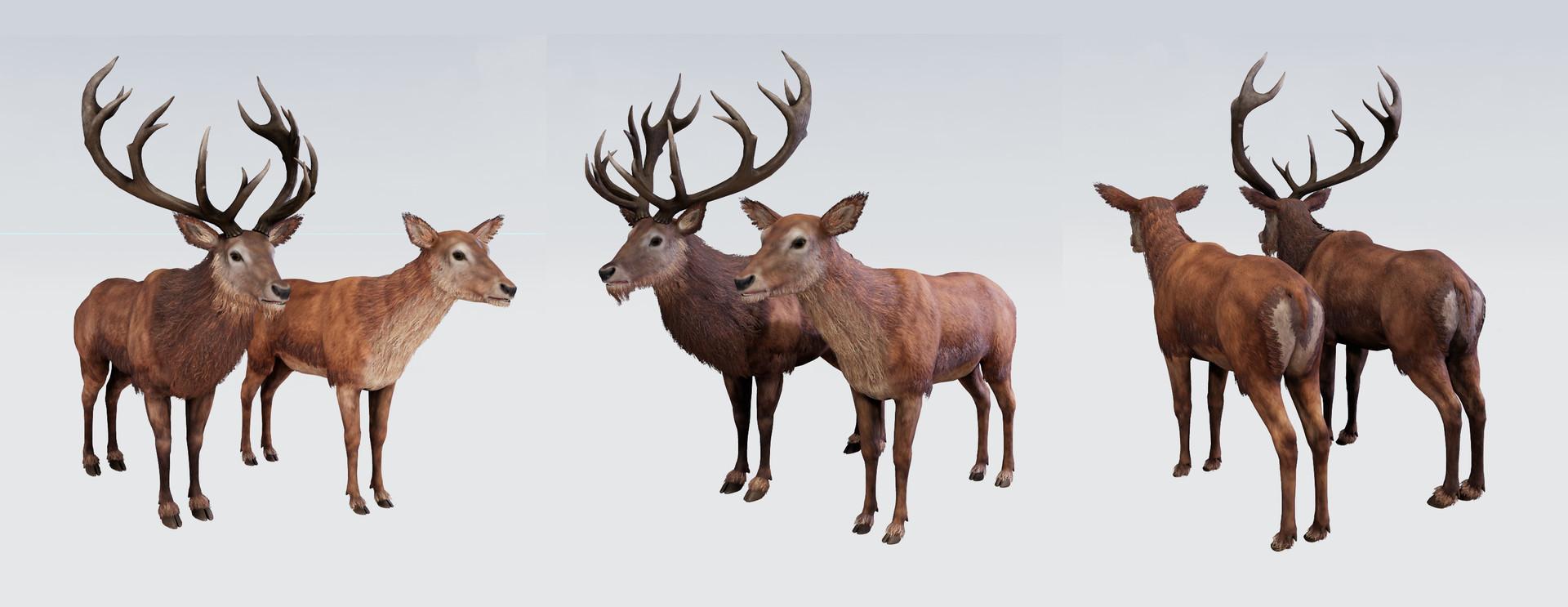 5518 studios 5518 3d artemg rune deer doe tex ue02