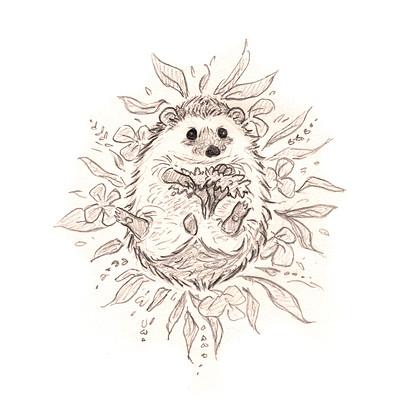 Ana paula guerra lomas hedgehog