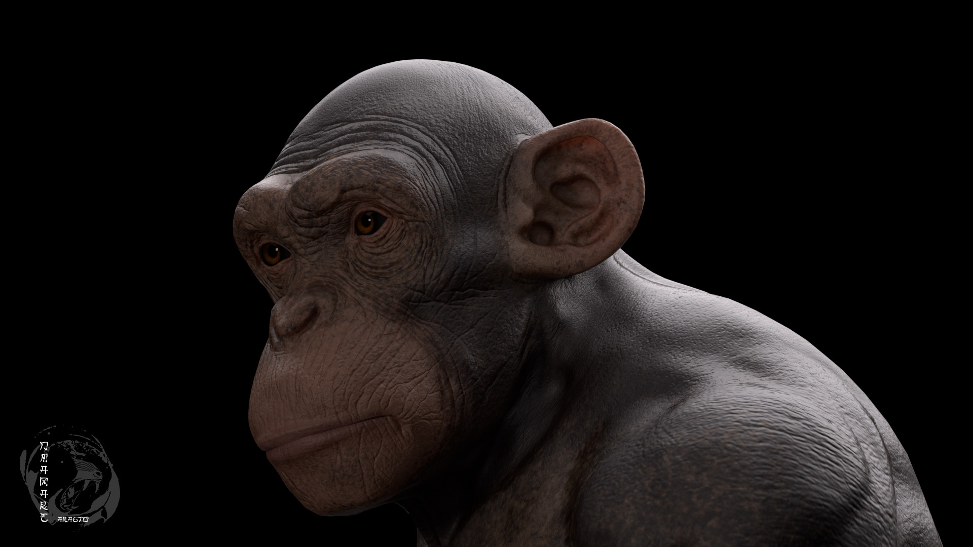 Dimax esteban araujo chimp render1