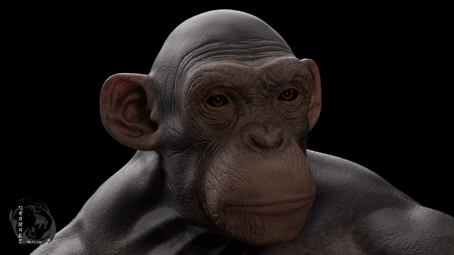 Dimax esteban araujo chimp render7