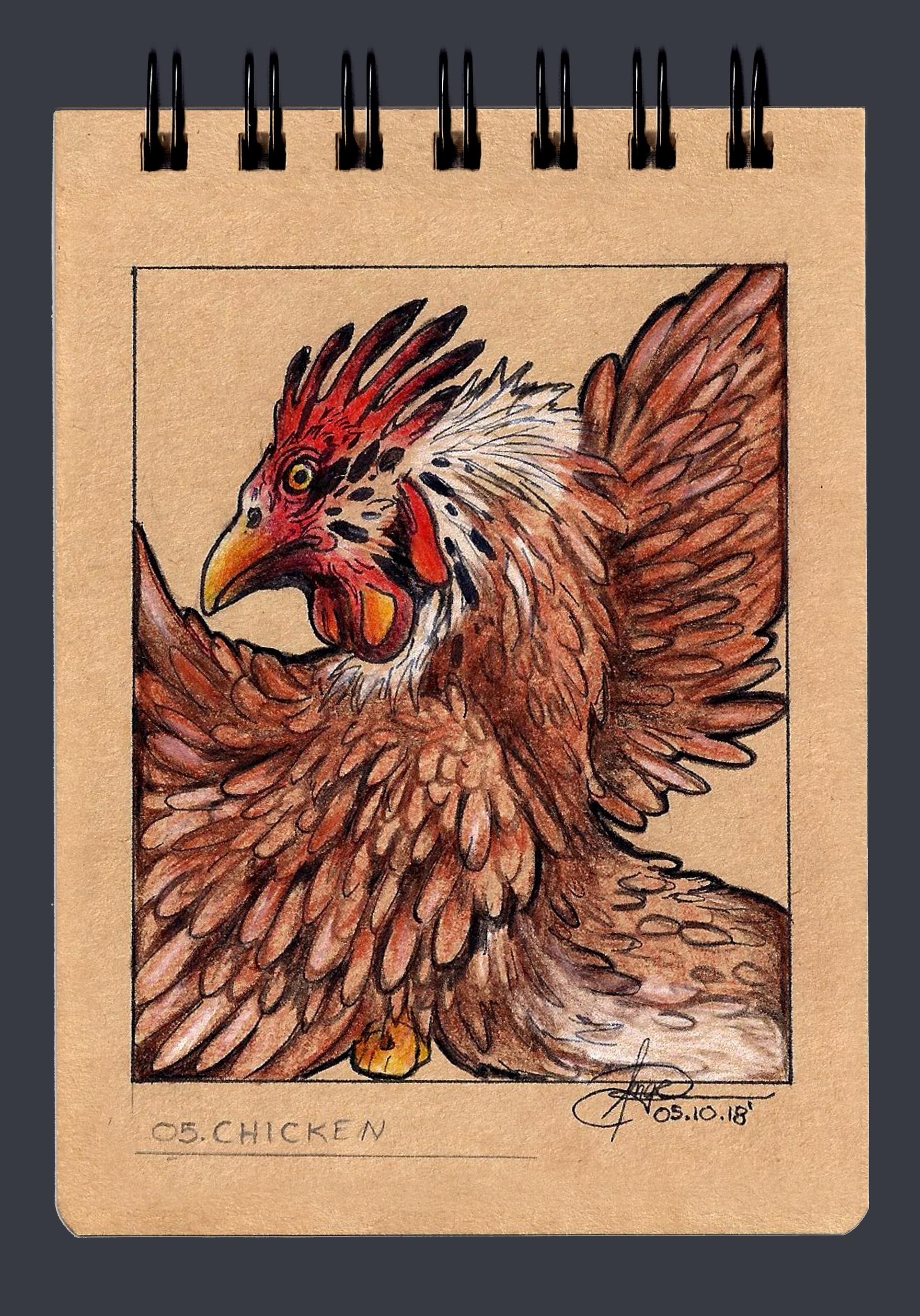 Angelica zurawski 181005 chicken