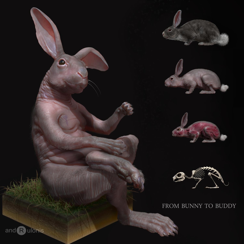 Dariusz andrulonis 01 bunny buddy