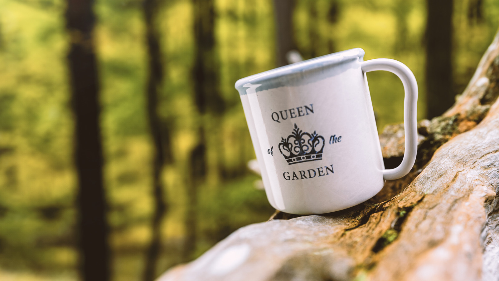 Queen of the Garden - My wife's favourite mug reimagined in C4D