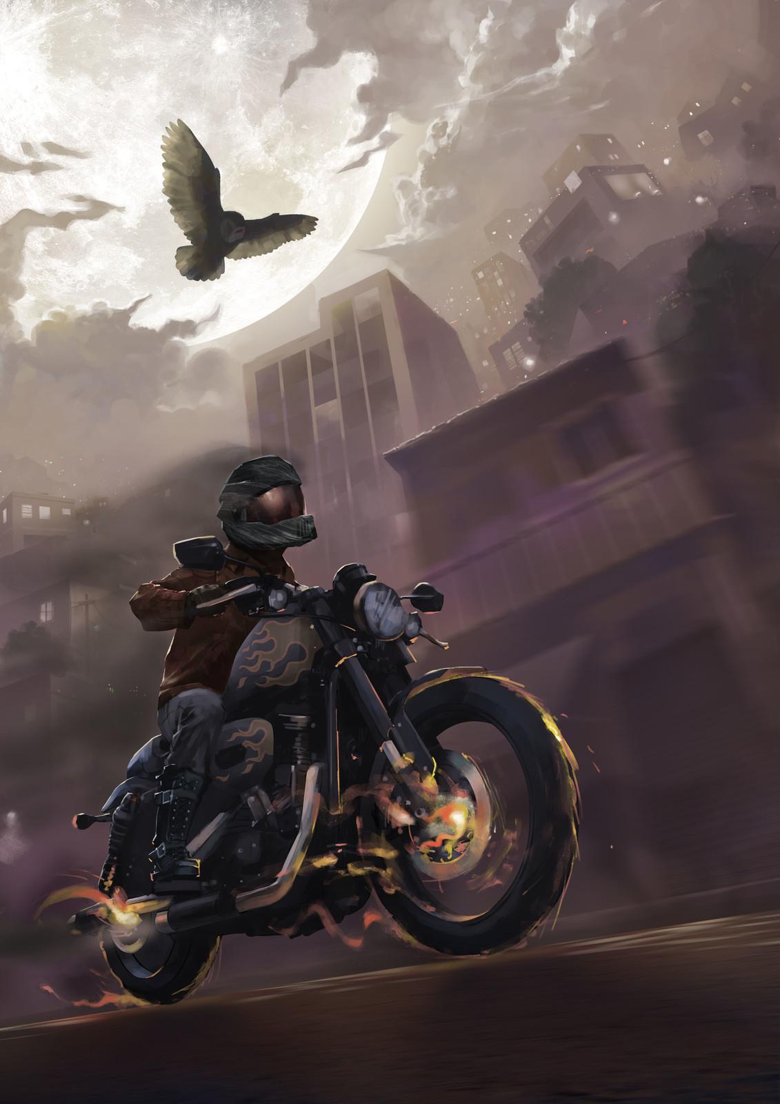Pôster Moto rider