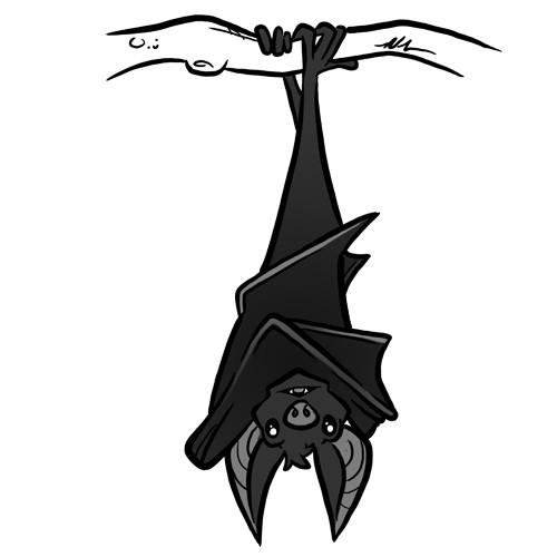 Steve rampton bat