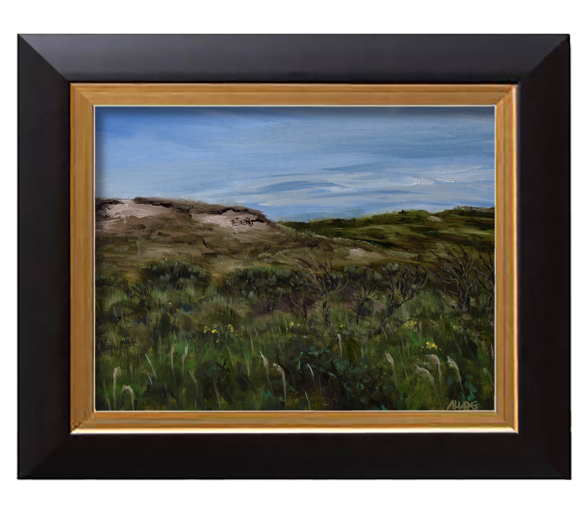 Arthur haas dunes framed small