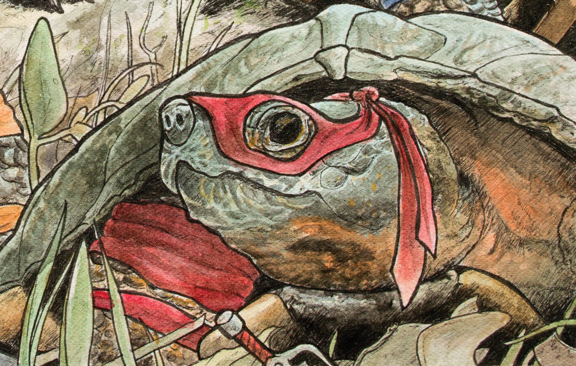 Graham moogk soulis moogk soulis turtles raf