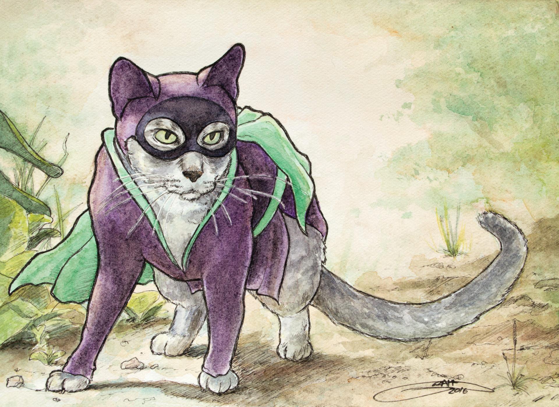 Graham moogk soulis moogk soulis cat full