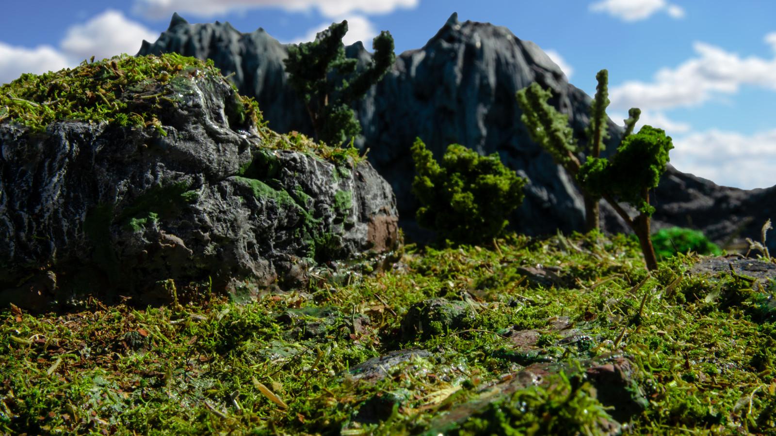 The Grasslands