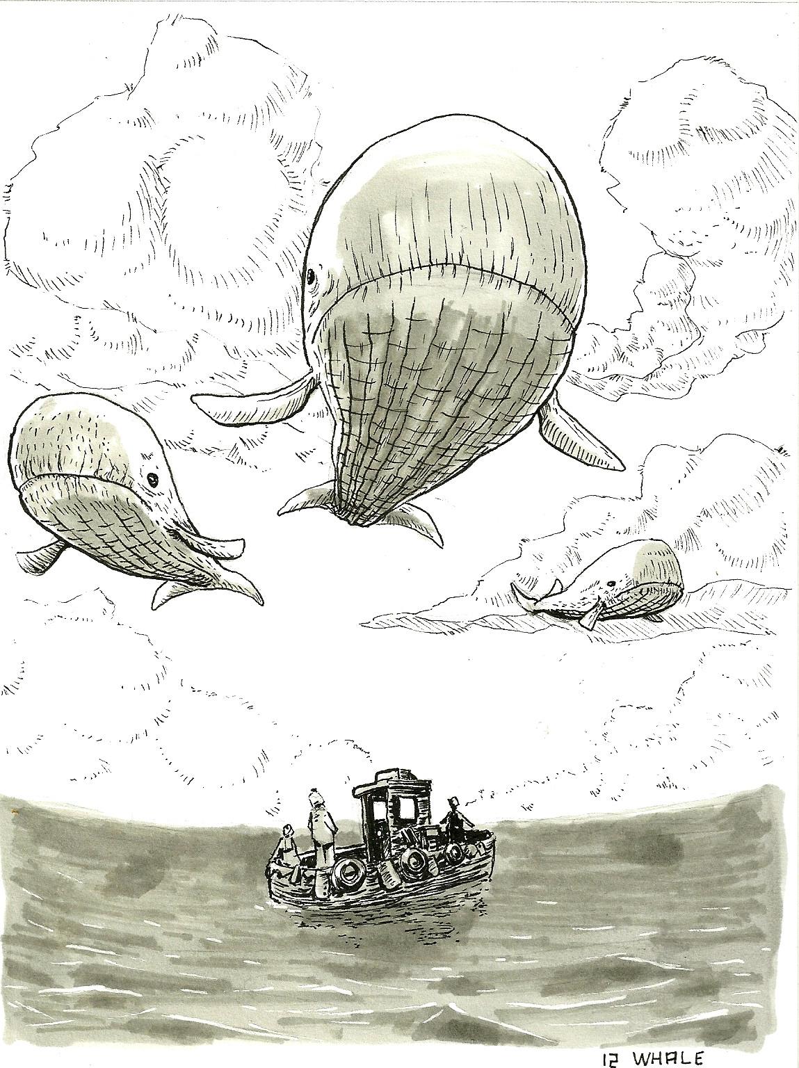 Antoine le corre 12 whale