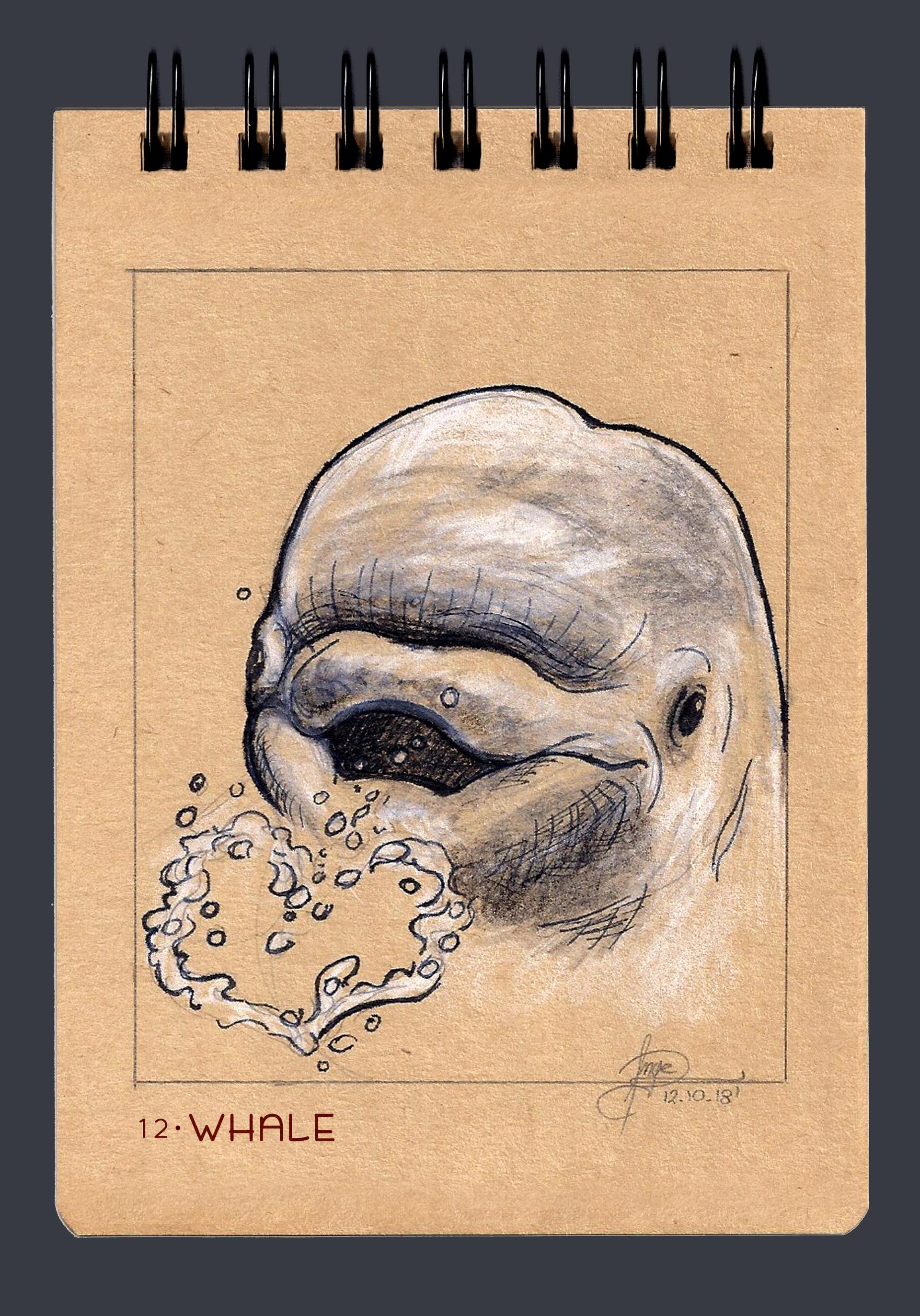 Angelica zurawski 181012 whale