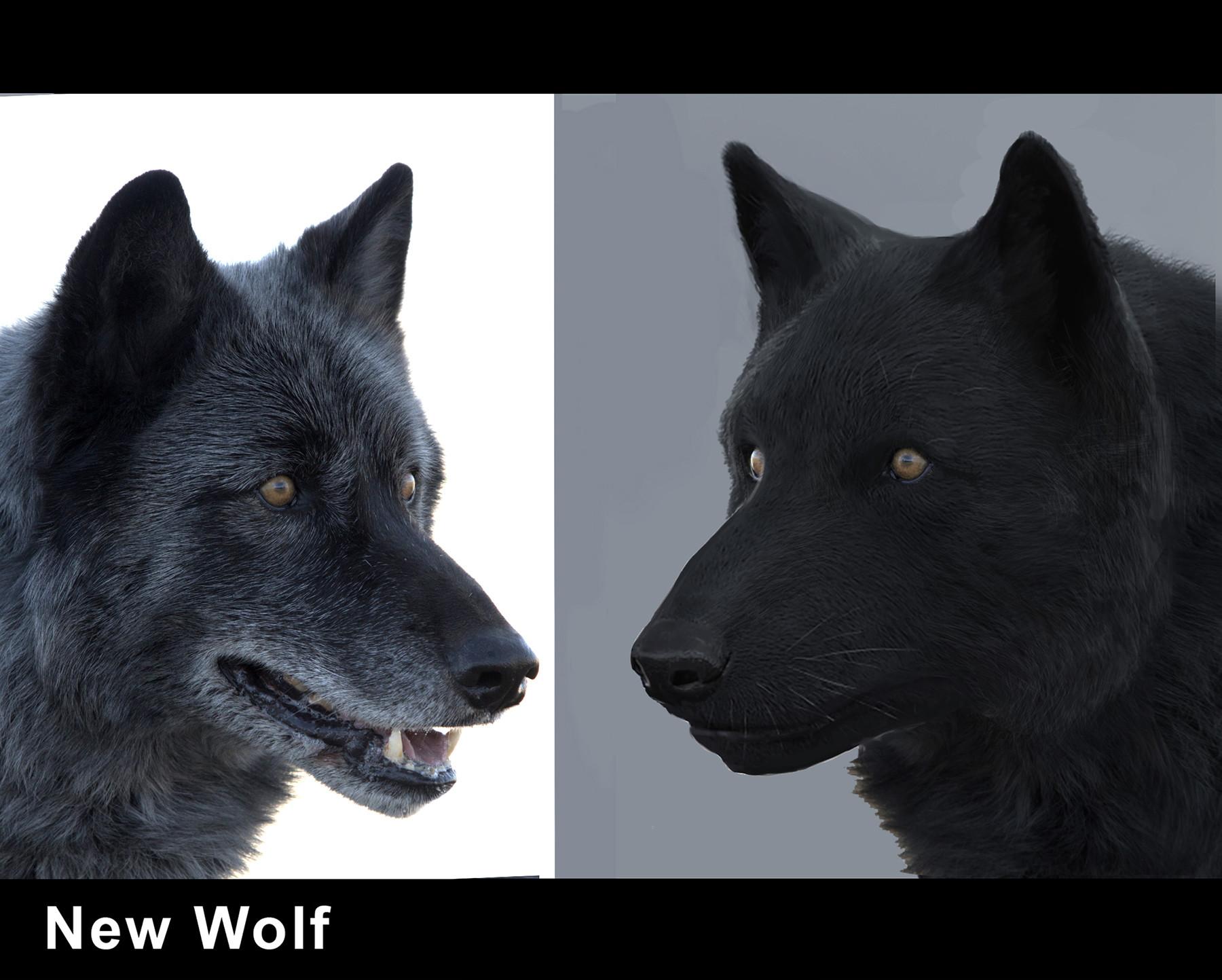 Luis carrasco rvt wolf 03