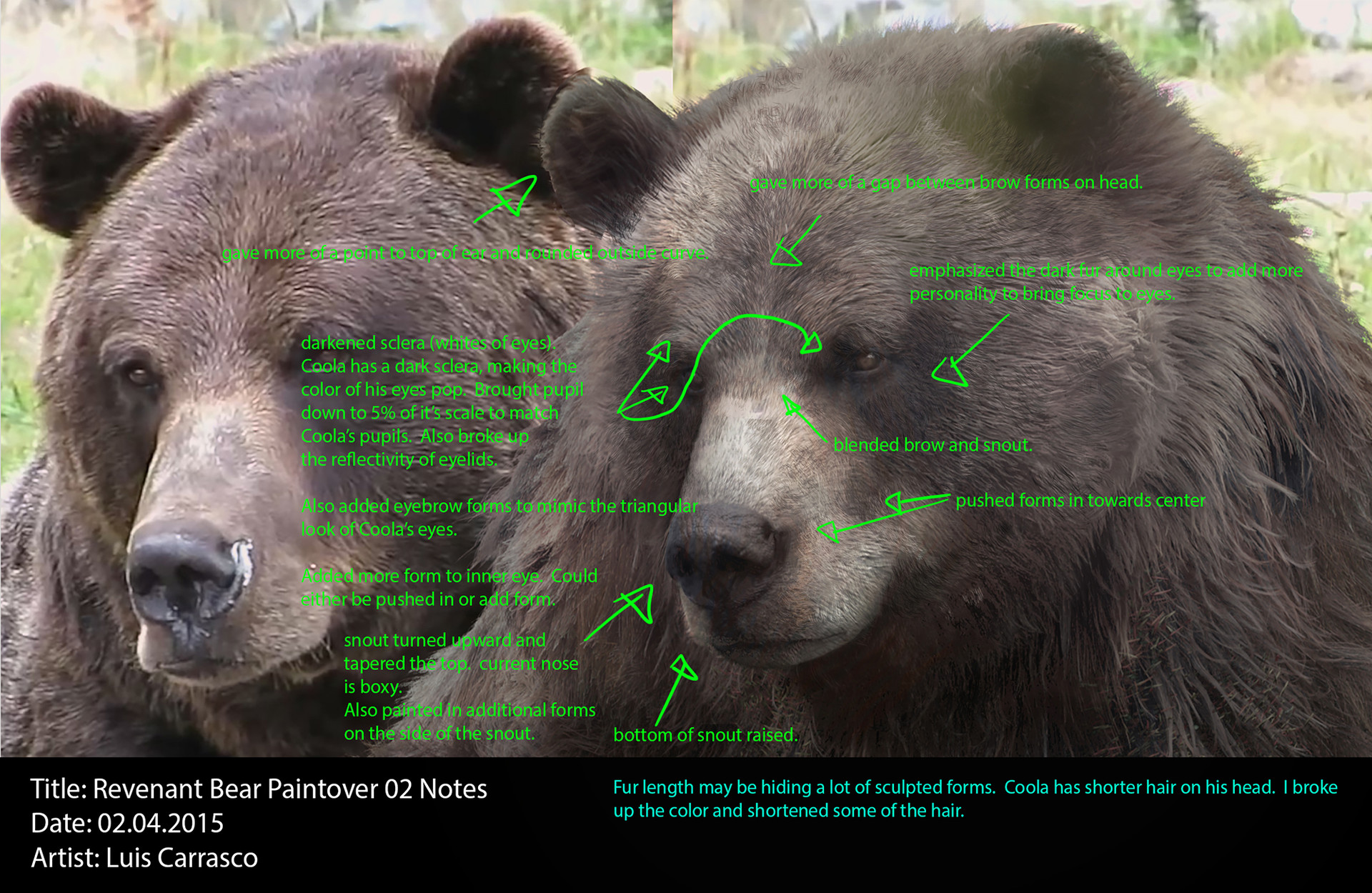 Luis carrasco rvt bear paintover 02 lc notes