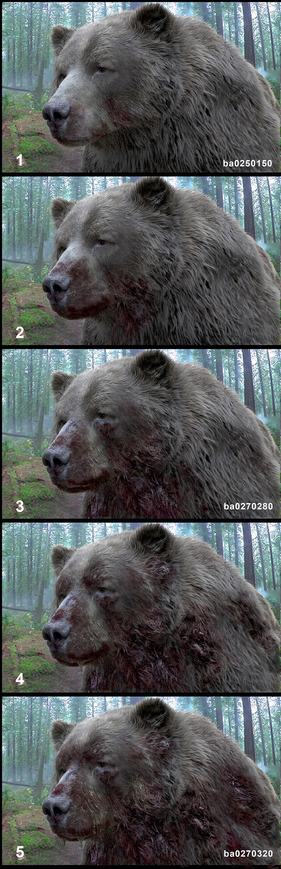 Luis carrasco ba bear bloodstages v01