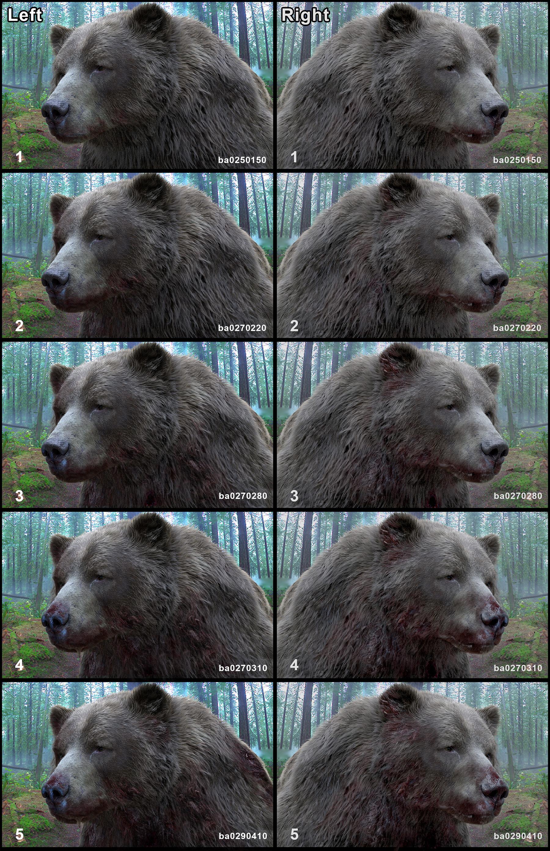 Luis carrasco ba bear bloodstages 03