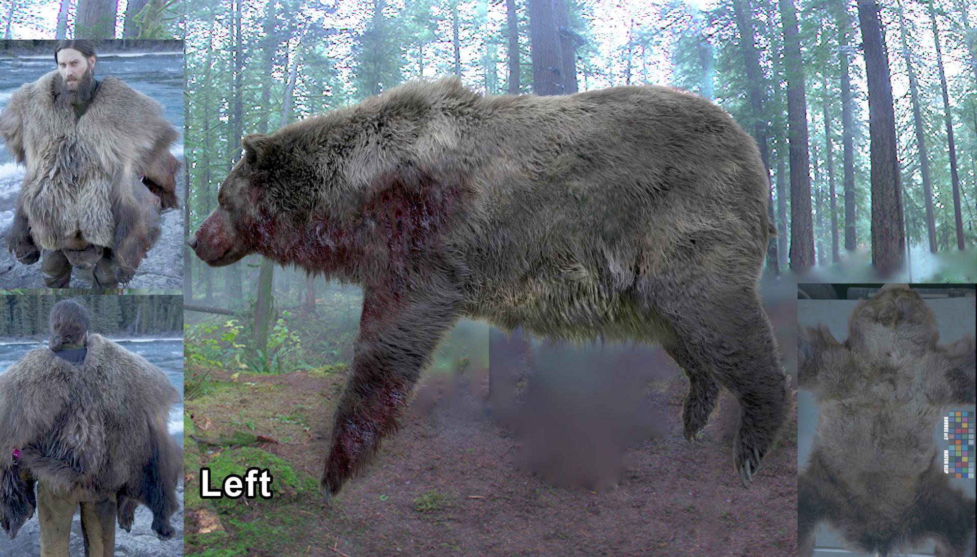 Luis carrasco bear belly2