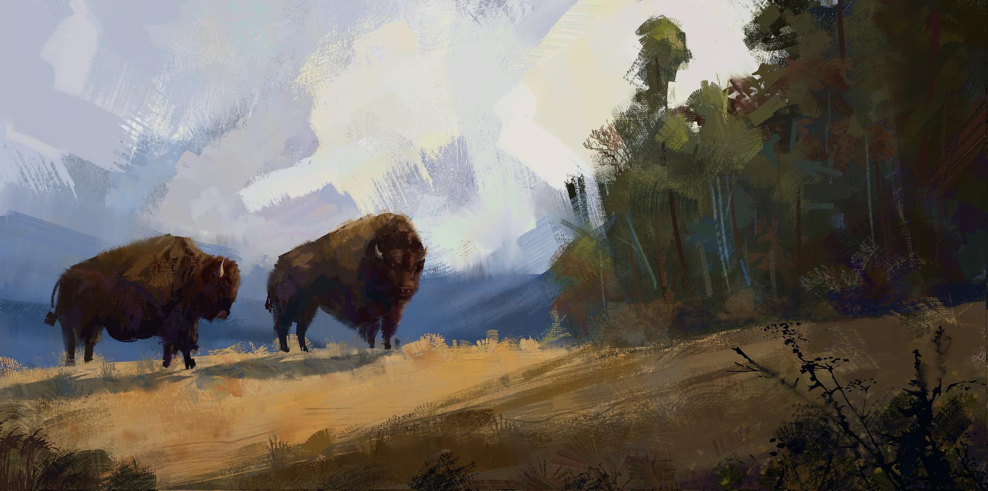 Jack dowell bison4