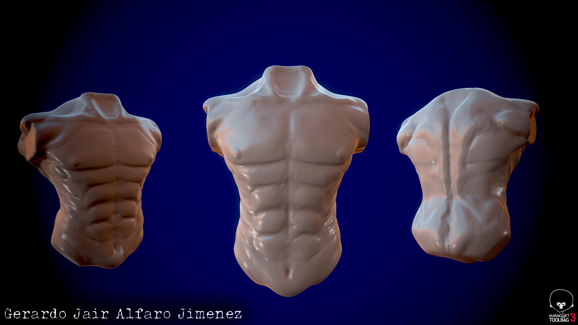Gerardo Jair Alfaro Jimnez Anatomy Study Male Chest