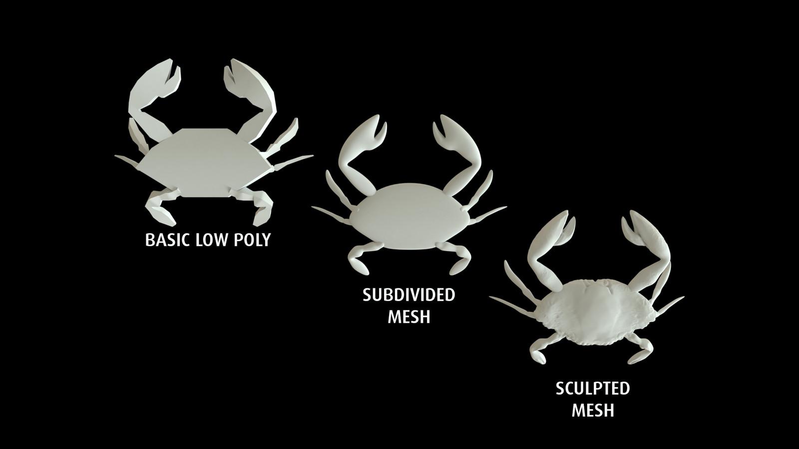 Evolution of the mesh