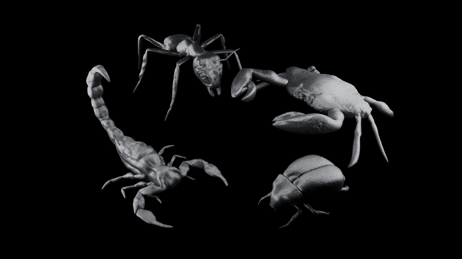 Ant, Scorpion, Crab and a random Insect... in ZBrush and Cinema 4D!