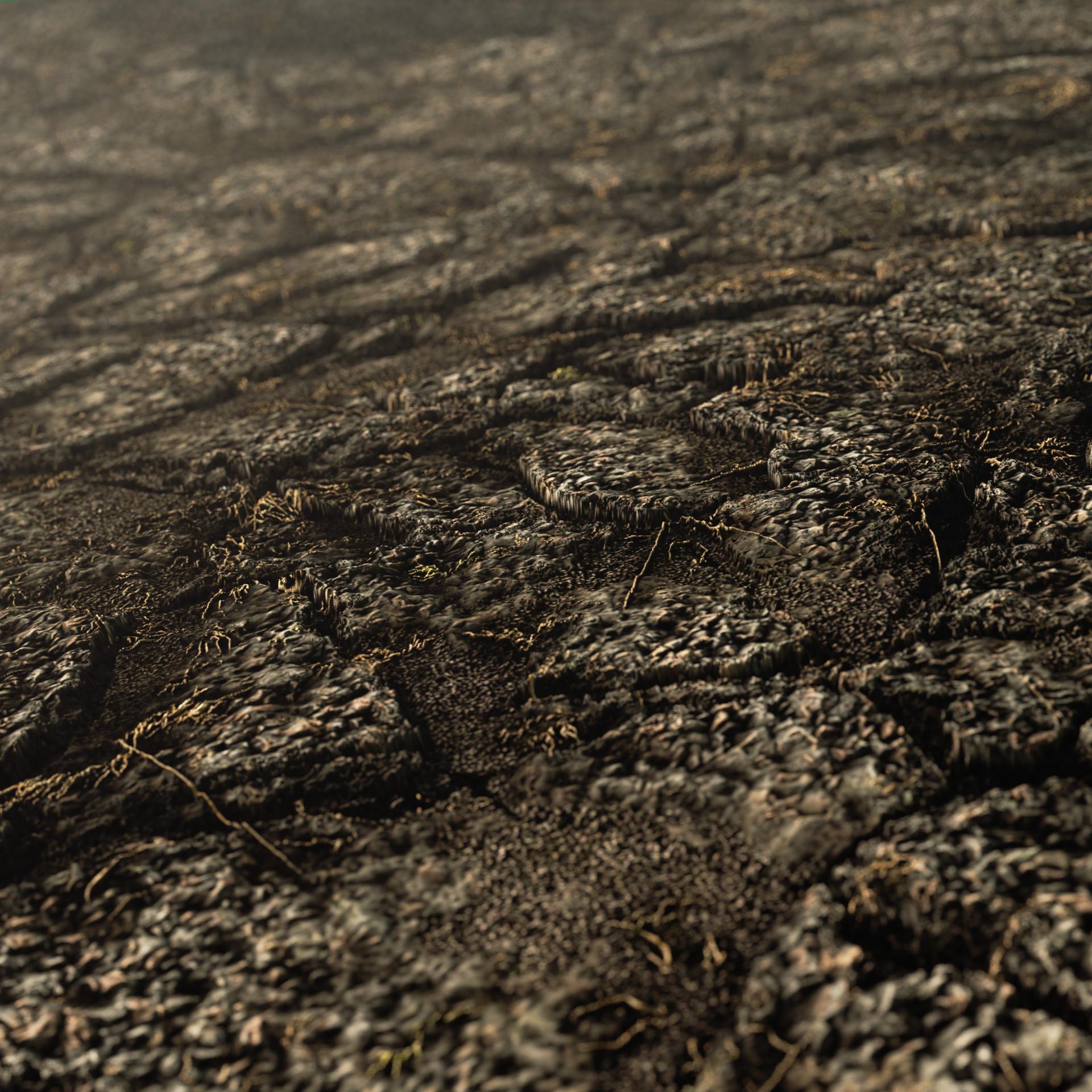 Cem tezcan hard soil ground 00002 beauty