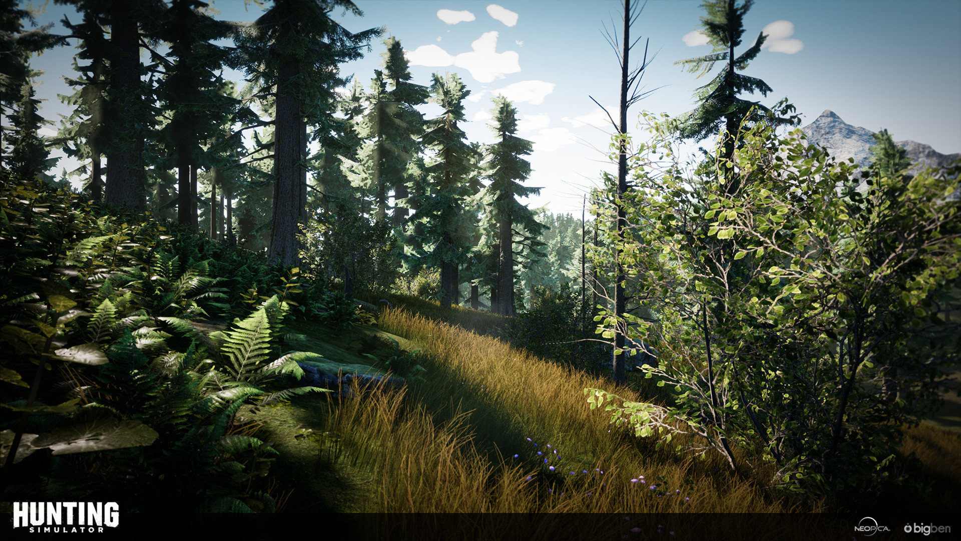 Flore vanackere huntingsimulator rainforest2