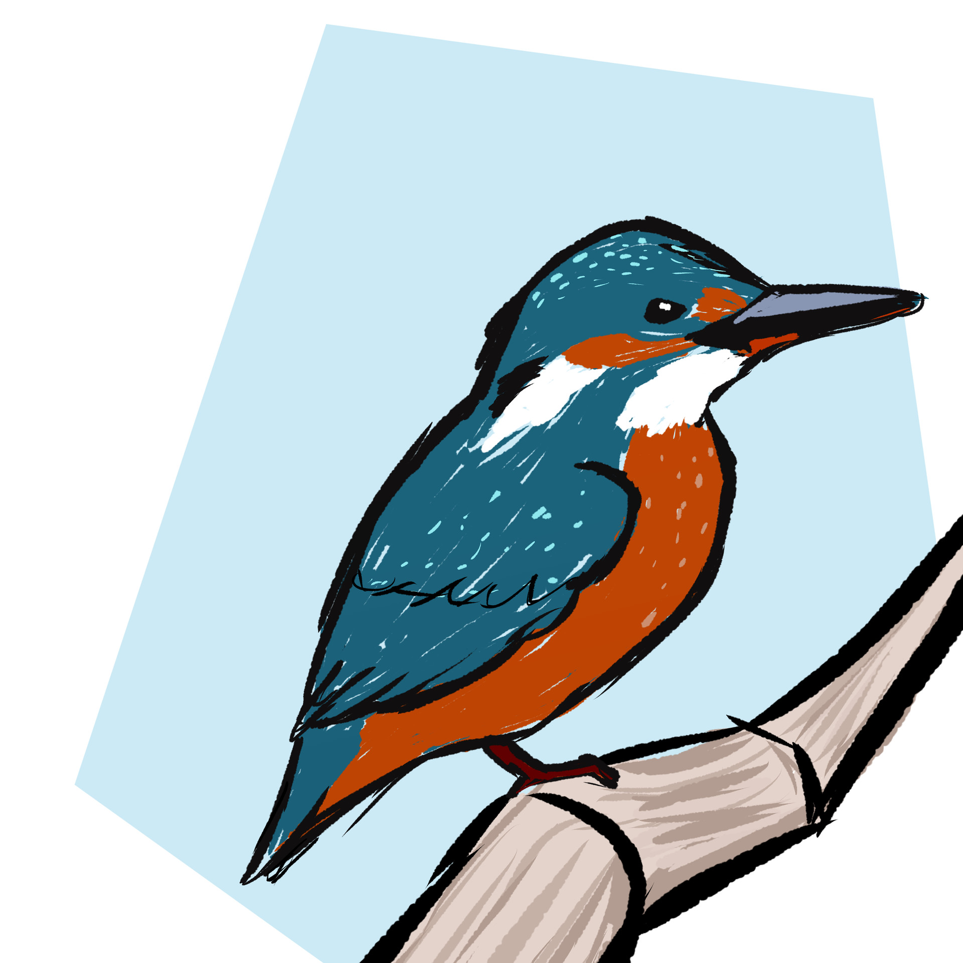 Jessi olney common kingfisher 1