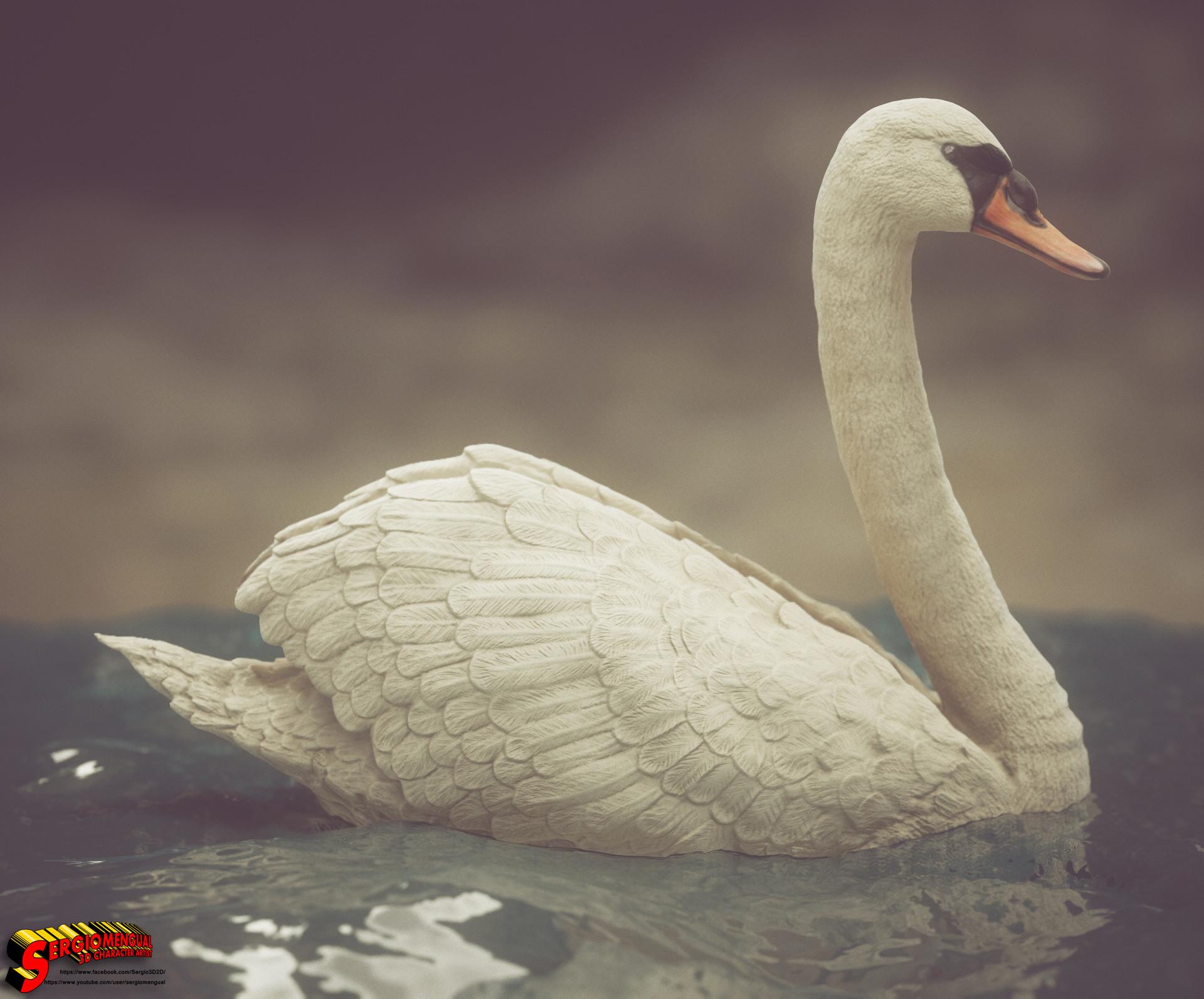Sergio gabriel mengual swan square 7