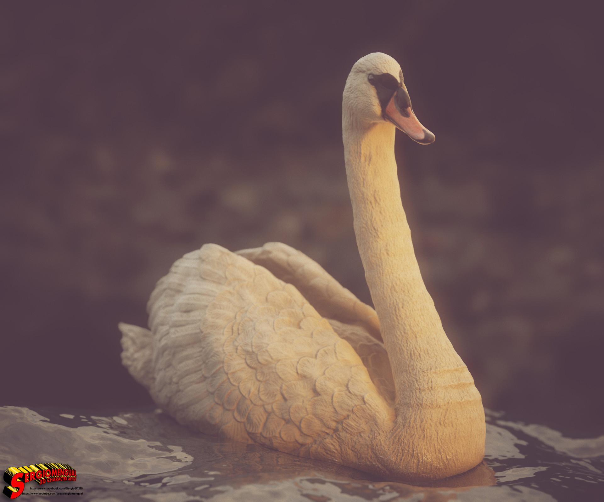 Sergio gabriel mengual swan square 2