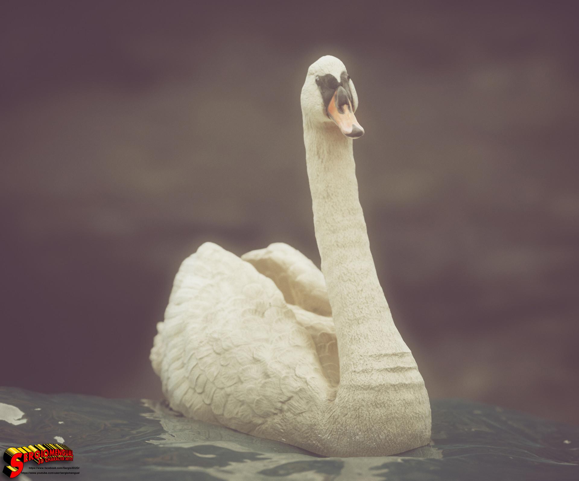 Sergio gabriel mengual swan square 11