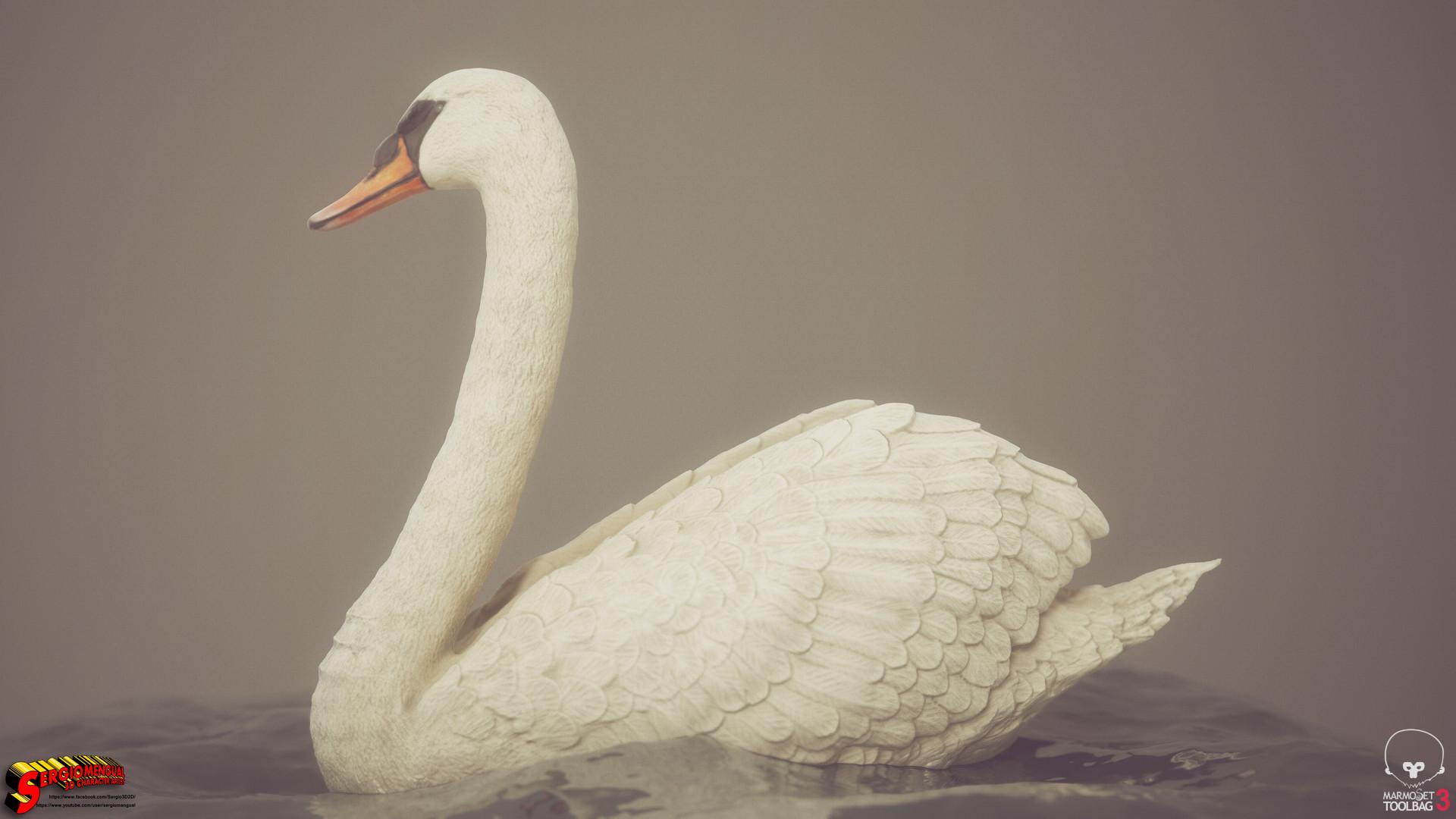 Sergio gabriel mengual swan horizontal 3
