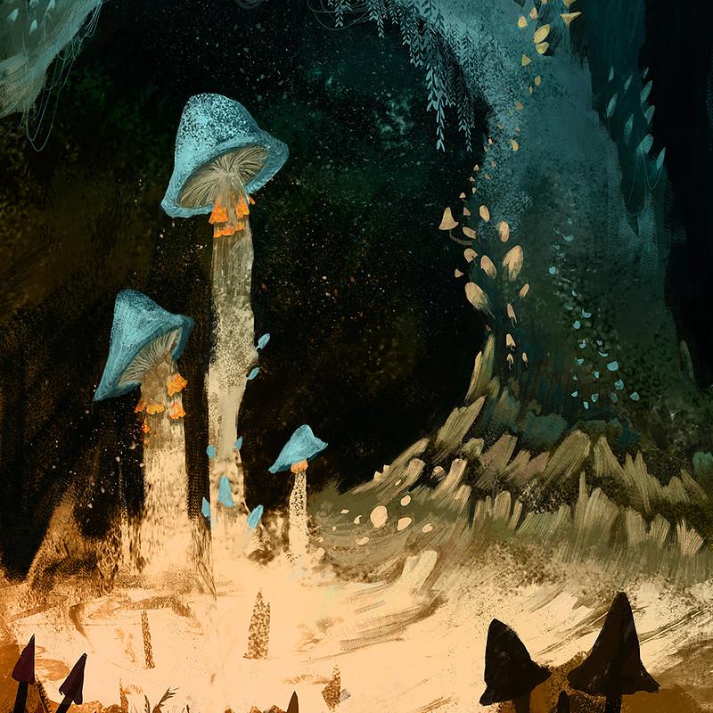 Fungi Cave