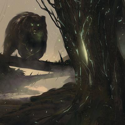 Giovanni calore concept forest