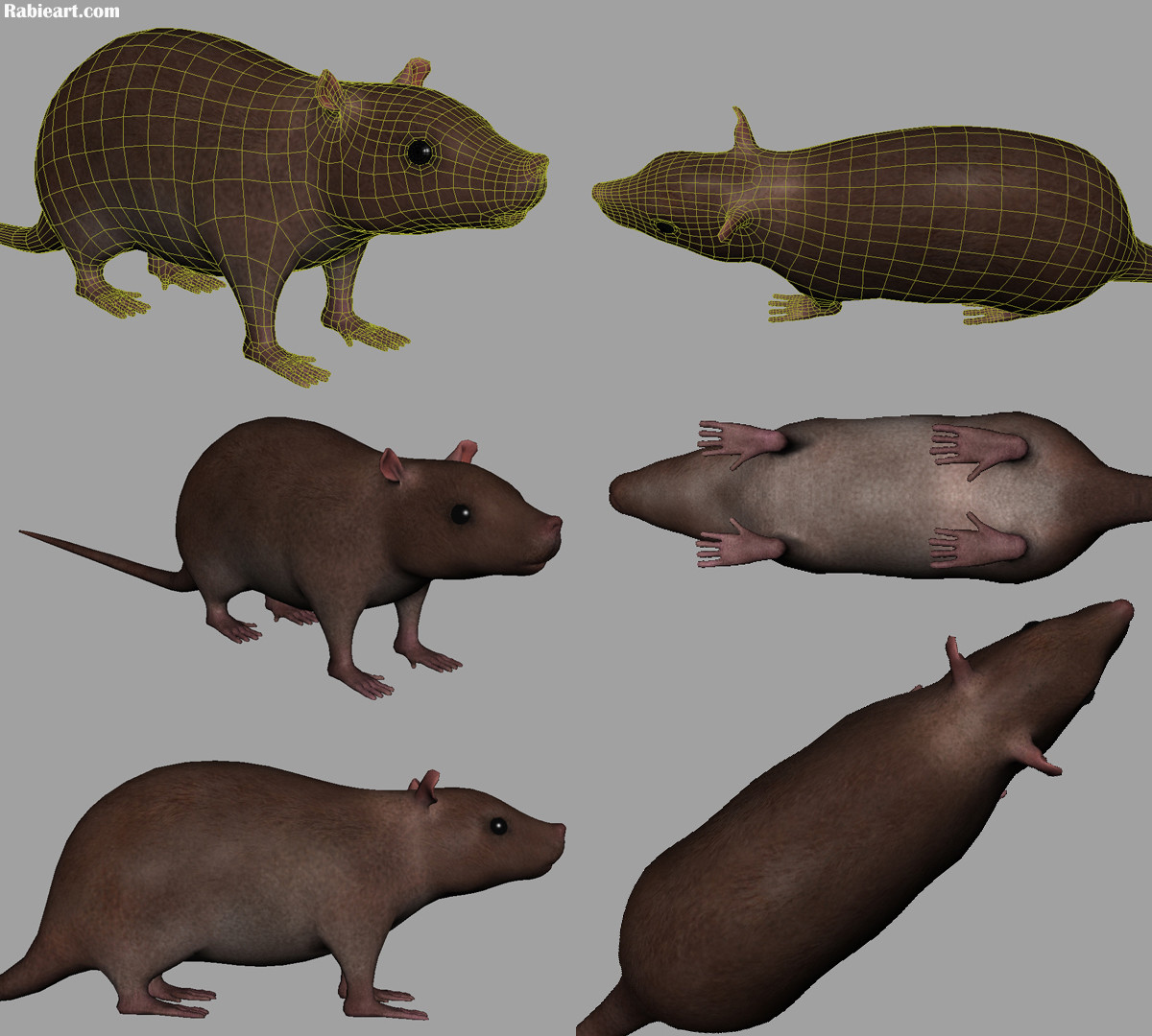 Mohamed aly rabie rabieart rat vfx project 2