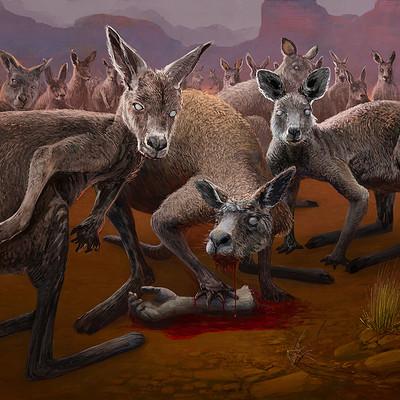 Tymoteusz chliszcz kangur concept 12 web