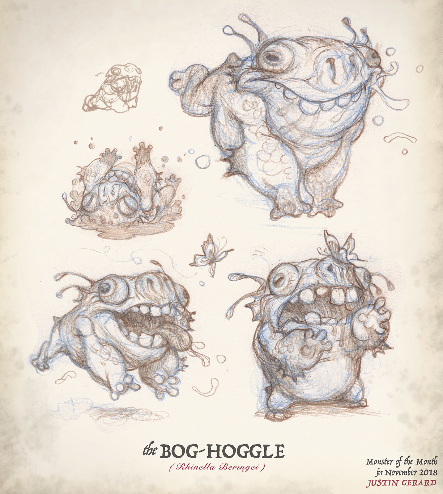 Studies for the Bog-Hoggle. Traditional color pencil on paper