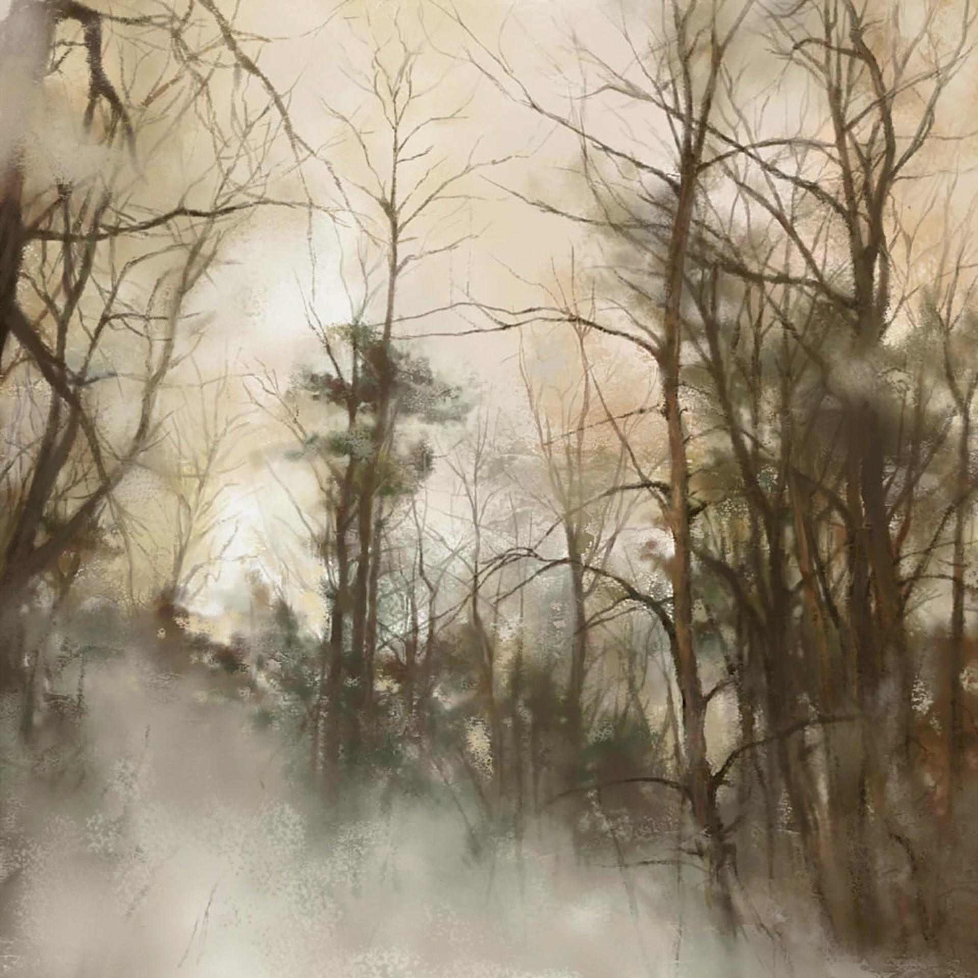 Natalia forest
