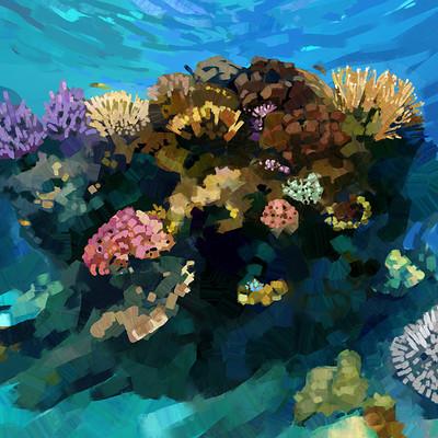 Madeleine bellwoar coral reef 3