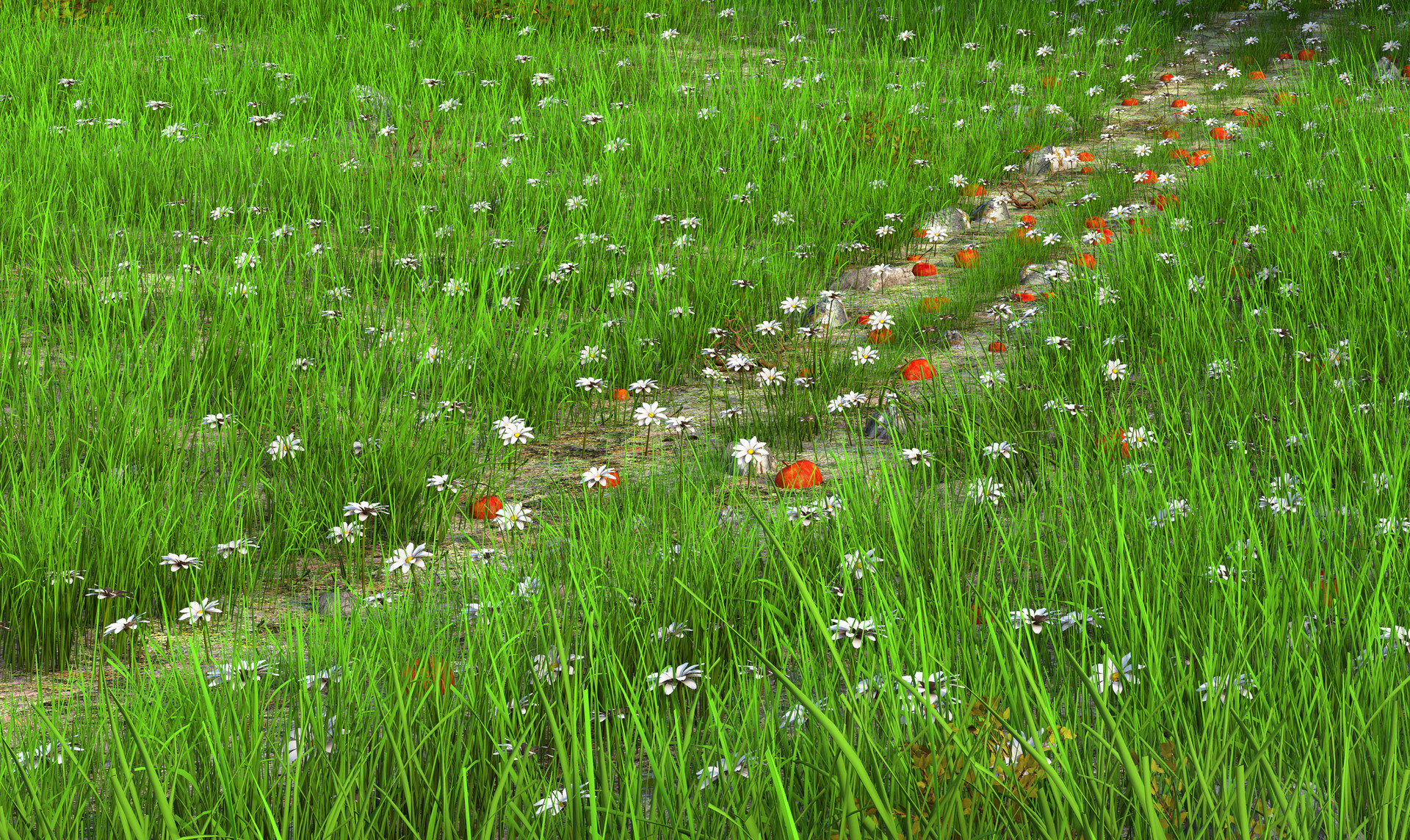 Marc mons meadow4