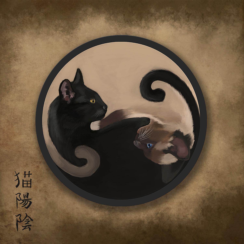Кошки инь и янь картинки