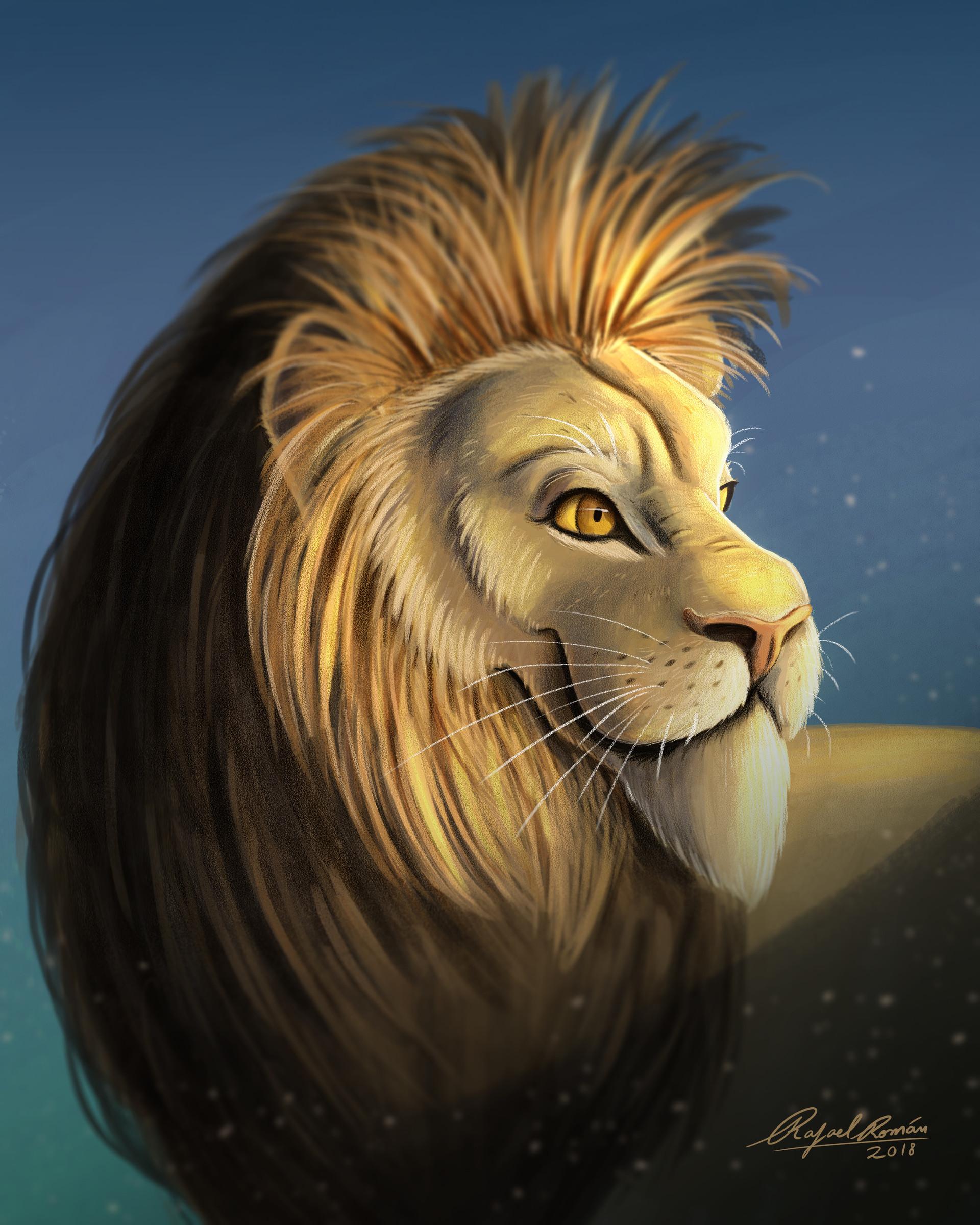 Rafael andrade lion illustration