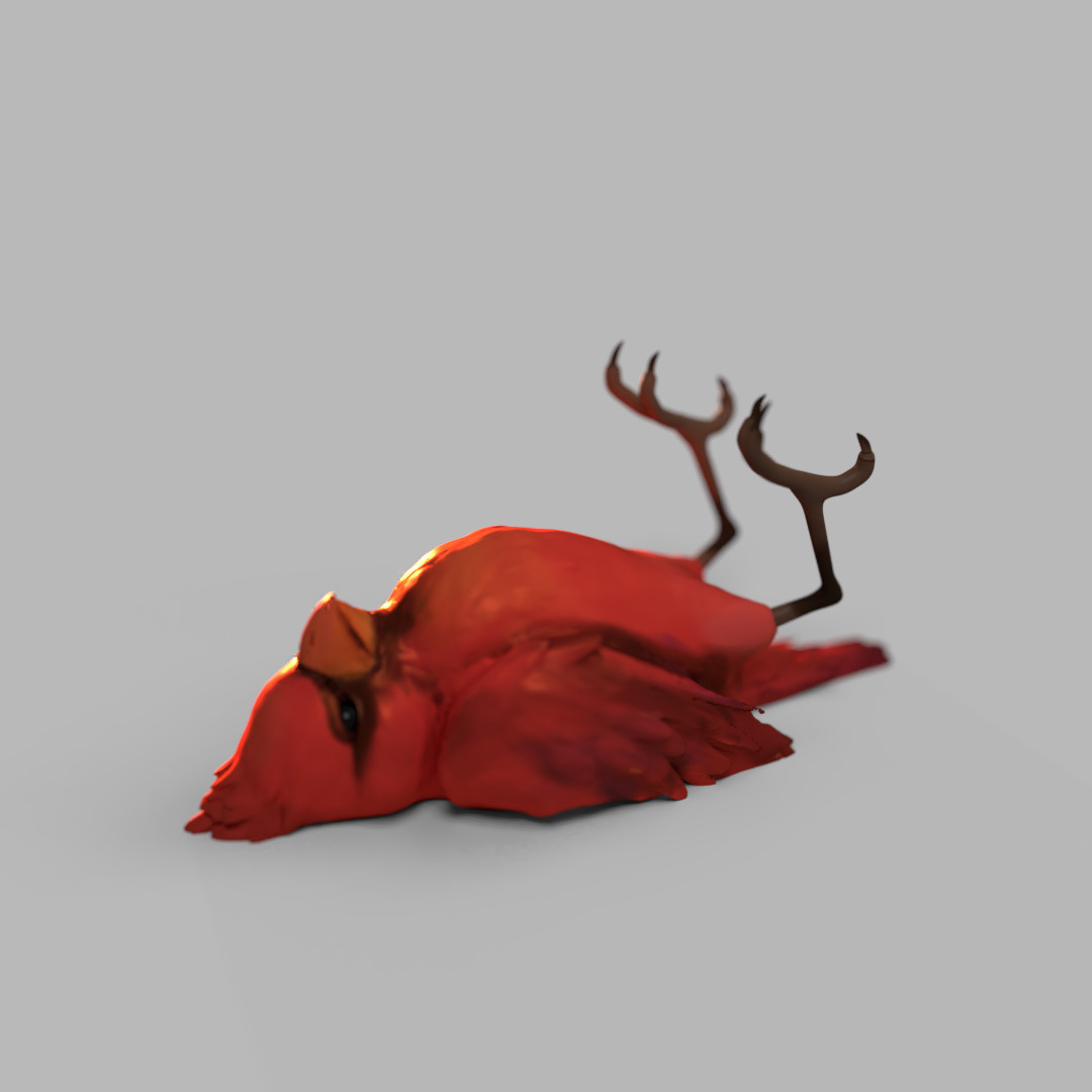 Heru Setiawan - Dead Cardinal