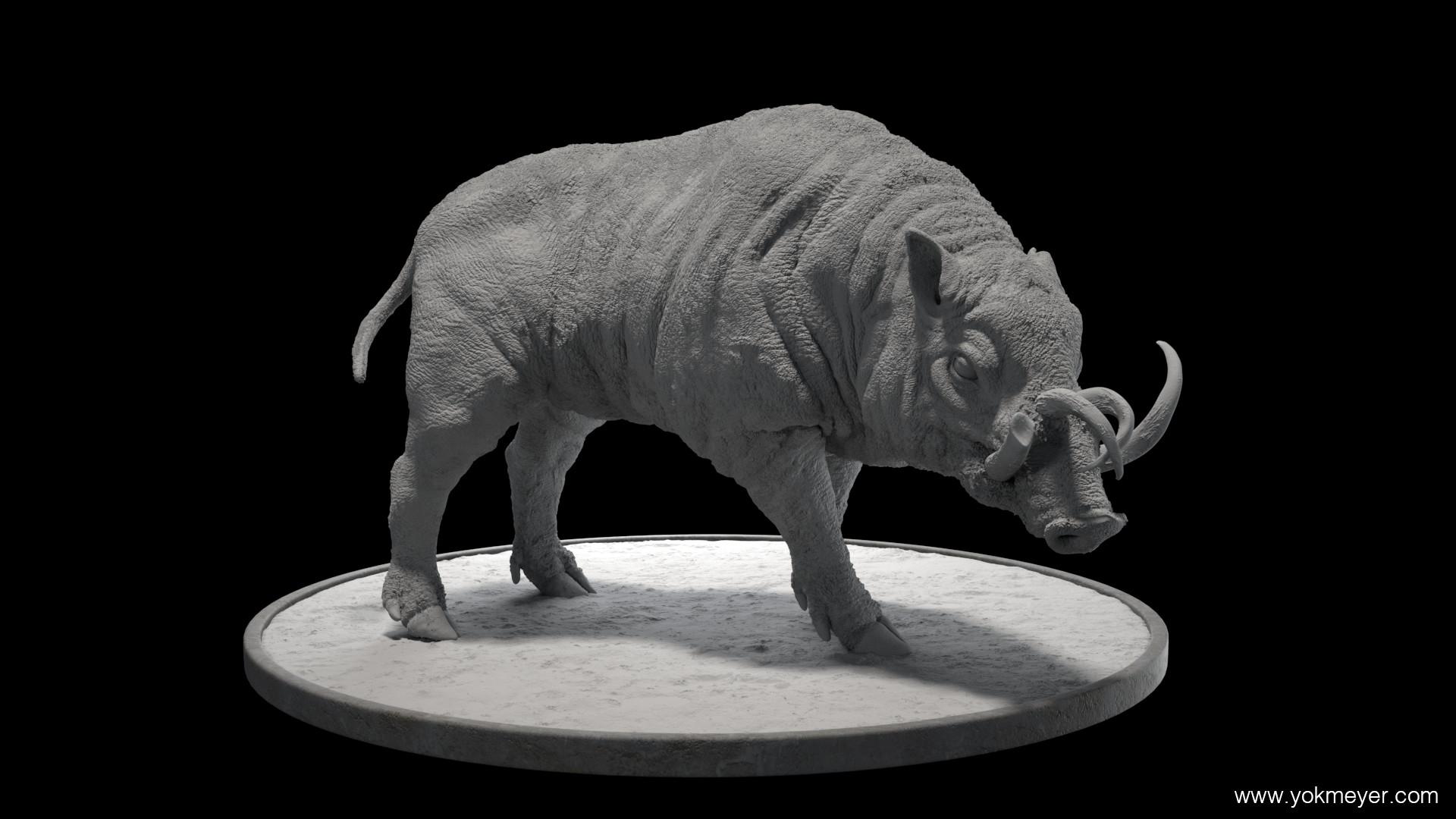 Yok meyer clay 1101