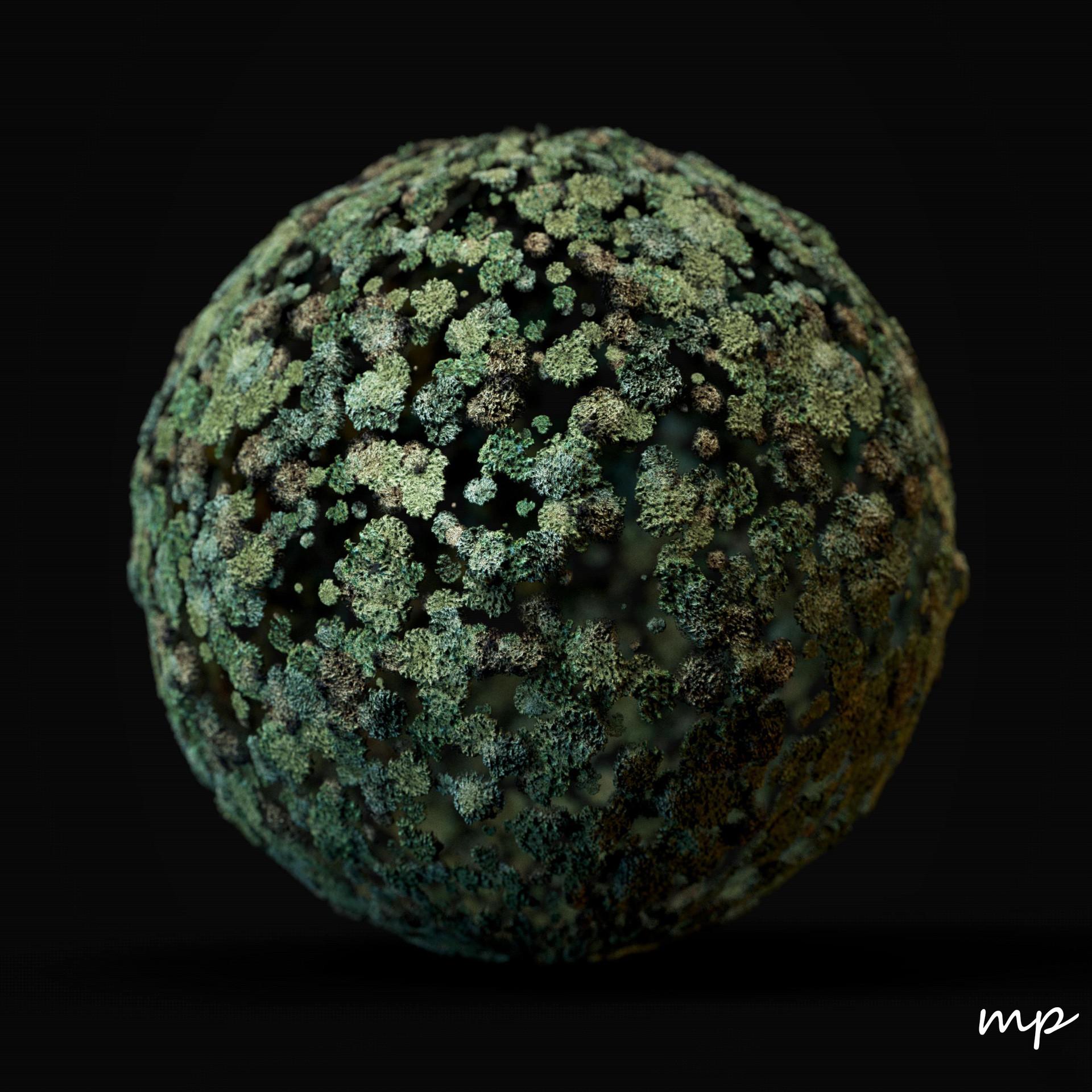 Martin pietras lichen render