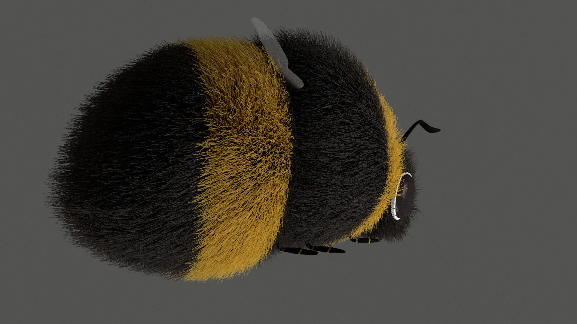 Laura gimenez bee render03 0115