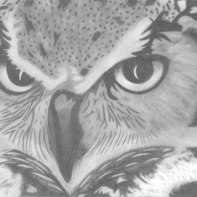 Mariah lindburg owl 09